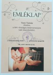 gitar38